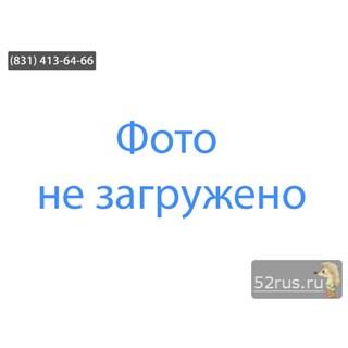Амортизатор (Амортизаторная Стойка) Задний Левый Для KIA Sorento (Соренто)